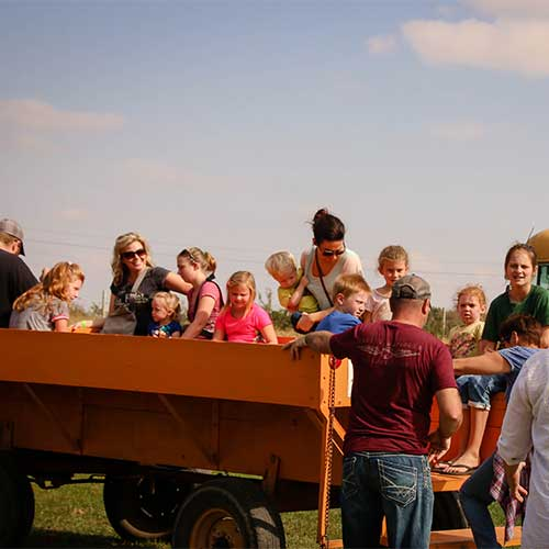 Join us for a hands-on educational field trip to our real working farm!